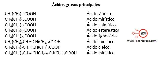 Lípidos saponificables – Temas Selectos de Química 2 1