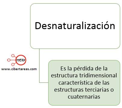 Desnaturalización de proteínas – Temas Selectos de Química 2 0