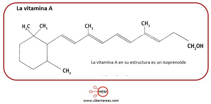 Lípidos no saponificables –  Temas Selectos de Química 2 2