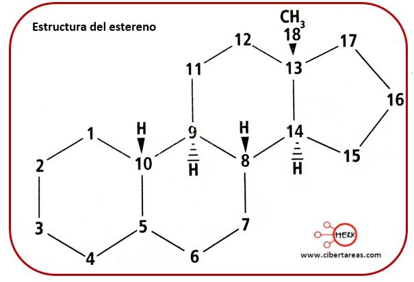 Lípidos no saponificables –  Temas Selectos de Química 2 4