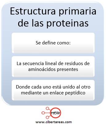 Estructura primaria de las proteínas – Temas Selectos de Química 2 0