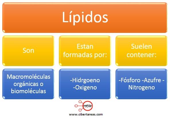 Estructura de los lípidos – Temas Selectos de Química 2 0