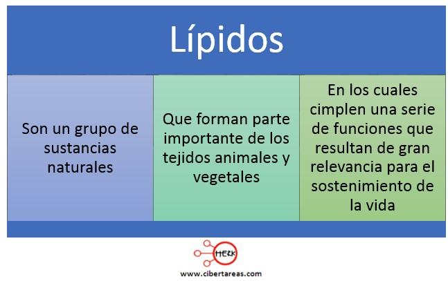 Lípidos – Temas Selectos de Química 2 0