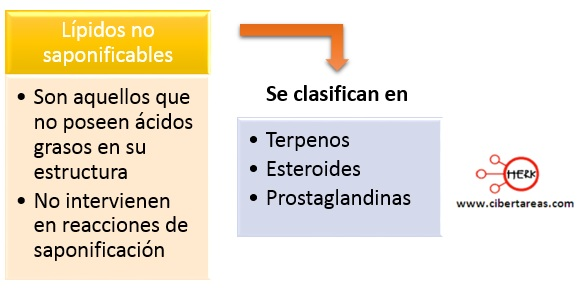 Lípidos no saponificables –  Temas Selectos de Química 2 0