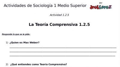 Actividades de la Teoría Comprensiva  – Sociología 1 0