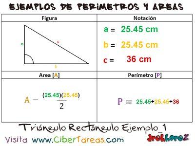 Triángulo Rectángulo – Ejemplos de Áreas y Perímetros 0