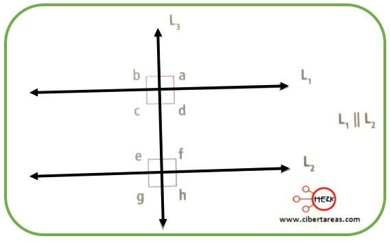 Ángulos formados por dos rectas paralelas y una secante – Matemáticas 2 2