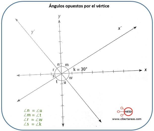 Ángulos opuestos por el vértice – Matemáticas 2 0