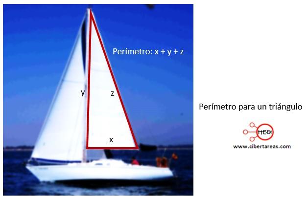 Calculo de perímetro y área de un polígono – Matemáticas 2 6