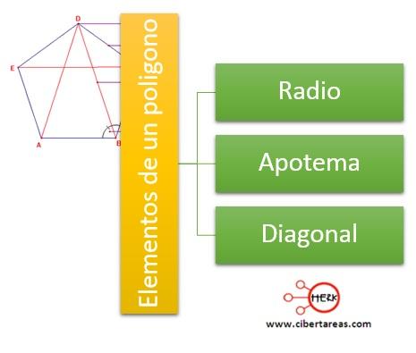 Elementos de los polígonos: radio, apotema y diagonal – Matemáticas 2 1