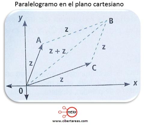 Polígonos regulares e irregulares – Matemáticas 2 3