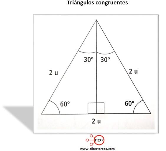 Calculo de valores 30°, 45° y 60° – Matemáticas 2 0