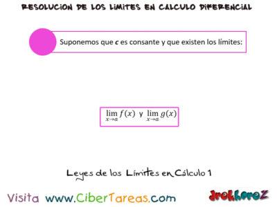 Reglas de las Leyes de los Límites con Ejemplos –  Cálculo Diferencial 0