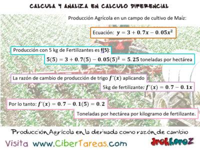 Ejemplo de Producción Industrial – Cálculo Diferencial 0