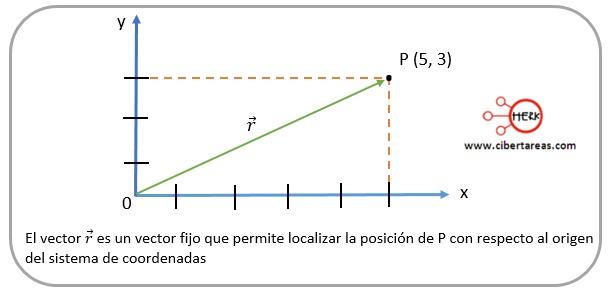 vector fijo fisica