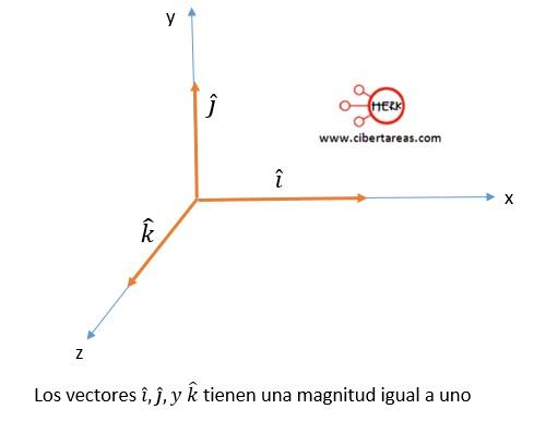 Vector unitario o versor – Física 1 5