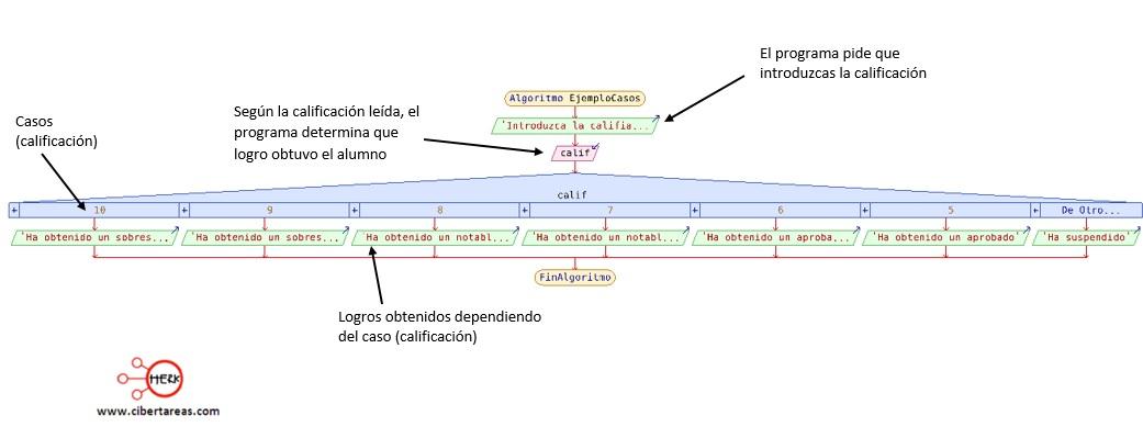 Función segun – Programación 1