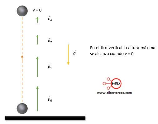 Tiro vertical – Física 1 1