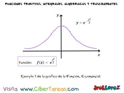 Integral de la Función Exponencial con Ejemplos – Cálculo Integral 4