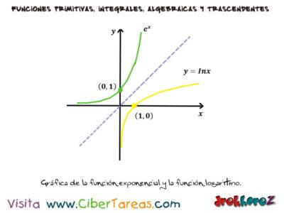 Integral de la Función Exponencial con Ejemplos – Cálculo Integral 1