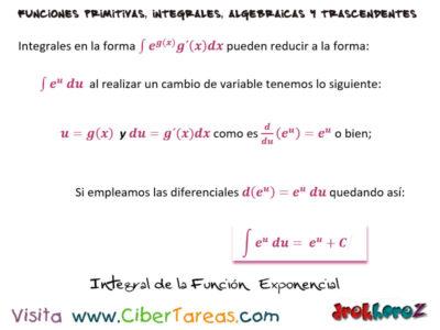 Integral de la Función Exponencial con Ejemplos – Cálculo Integral 0