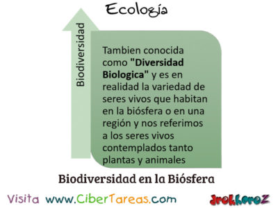 Biodiversidad en la Biósfera – Ecología 0