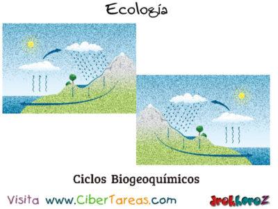 Ciclos Biogeoquímicos y la Dinámica de las Especies en los Ecosistemas – Ecología 0