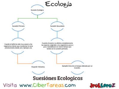 La Sucesión Ecológica – Ecología 0