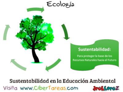 Desarrollo Sustentable o Sostenible en la Educación Ambiental – Ecología 0