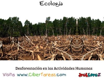 Deforestación en las Actividades Humanas en la Biósfera – Ecología 0