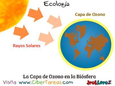 La Capa de Ozono en la Biósfera – Ecología 0
